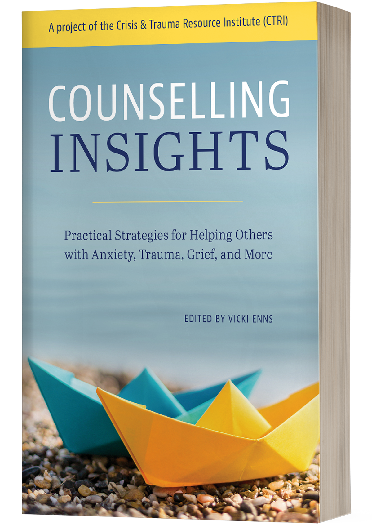 Image of Counselling Insights - Book
